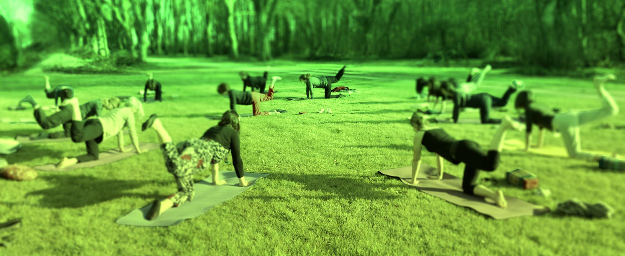 Stages et retraites de yoga